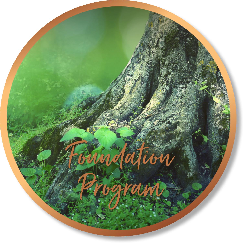 Foundation program circle